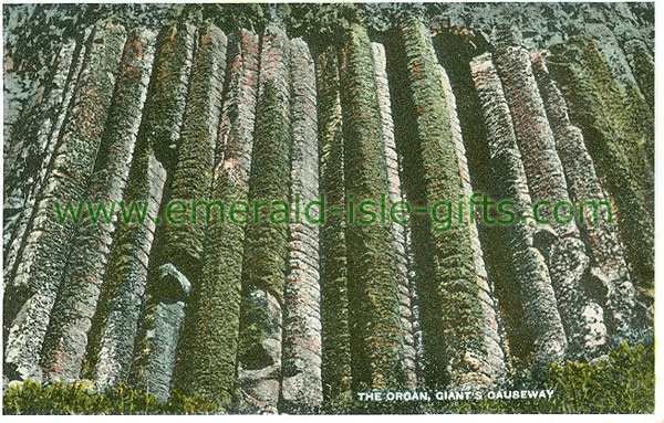 Antrim - Giants Causeway - The Organ