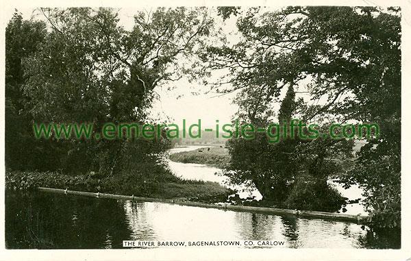 Carlow - Bagnalstown - River Barrow