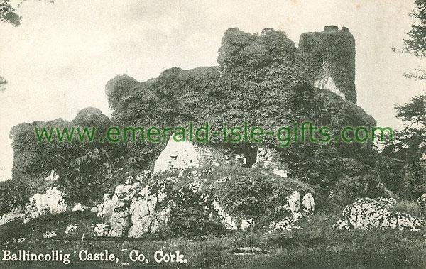 Cork - Ballincollig - Ballincollig Castle