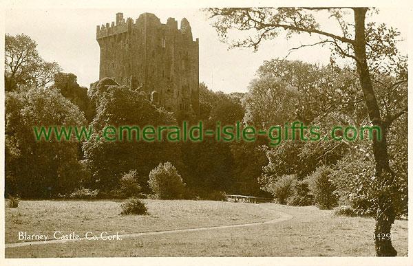 Cork - Blarney - Blarney Castle