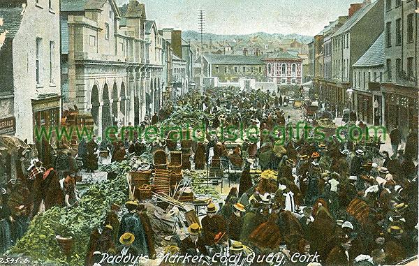 Cork - Cork City - Paddy