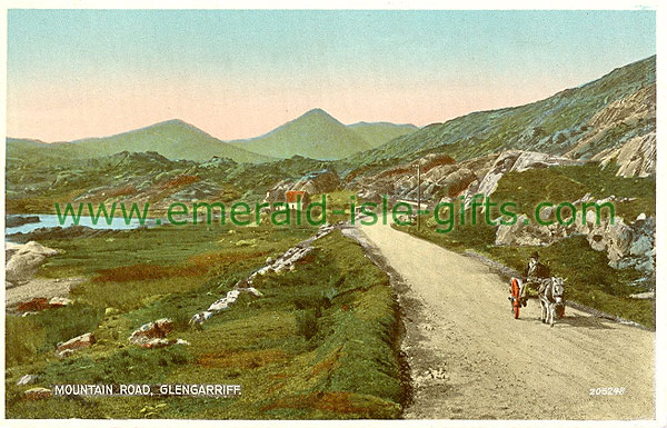 Cork - Glengarriff - Mountain Road, Glengarriff