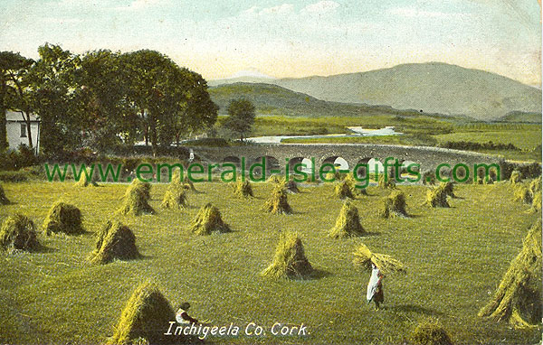 Cork - Inchigeela - Harvest Scene