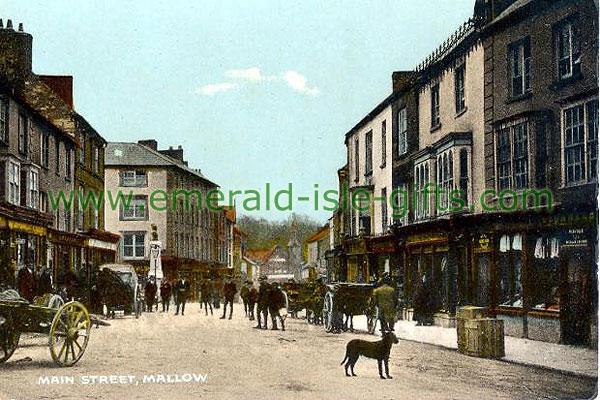 Cork - Mallow - Main Street in colour
