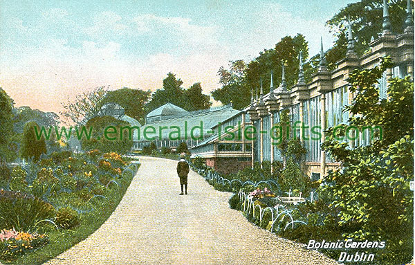 Dublin North - Glasnevin - Green Houses