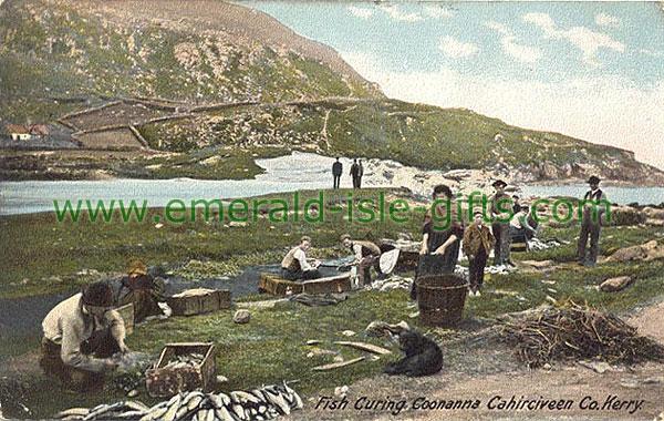 Fish Curing in Cahirciveen circa 1905 (old colour Irish print)