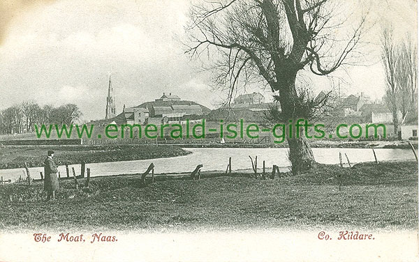 Kildare - Naas - The Moat and Copelands
