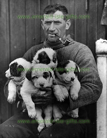 Tom Crean with sled dog puppies, 1915