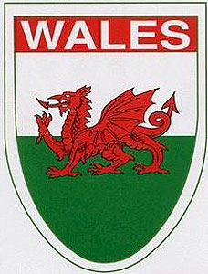 "Wales WELSH Dragon Decal Car Sticker 4"" x 3"" - UK - British - Cymru