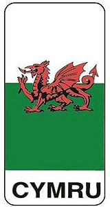 "Cymru Welsh Dragon Rectangle Decal Car Sticker 4"" x 3""