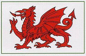 Welsh Red Dragon Deal Car Sticker