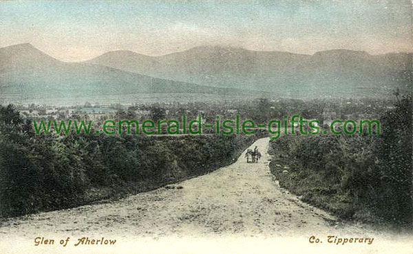 Tipperary - Glen of Aherlow - Winter scene
