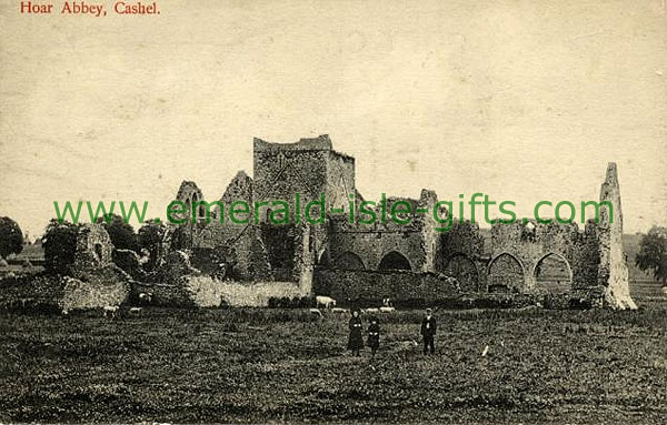 Tipperary - Cashel - Hoar Abbey ruins