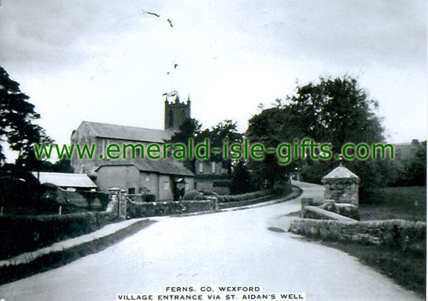 Wexford - Ferns - old b/w Irish photo
