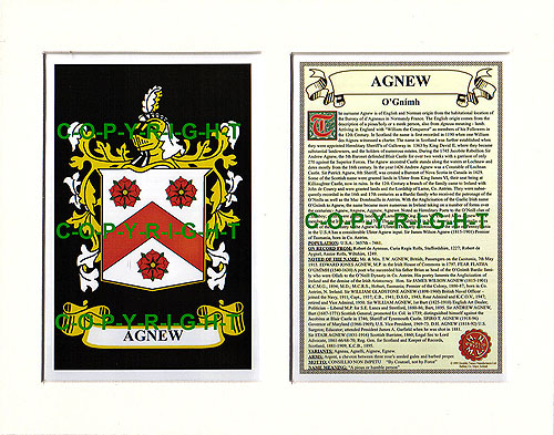 Agnew Family Crest and Name History