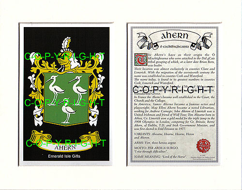 Ahern Family Crest and Name History