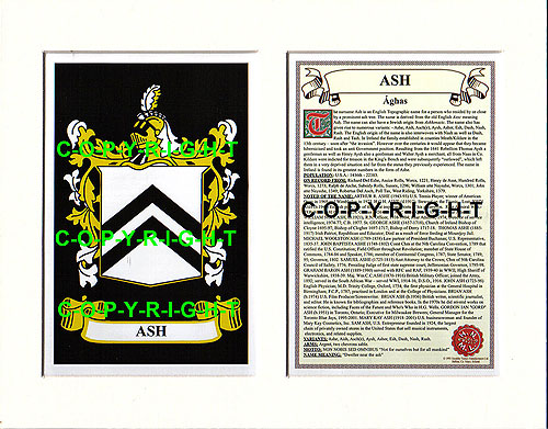 Ash Family Crest and Name History