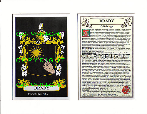 Brady Family Crest and Name History