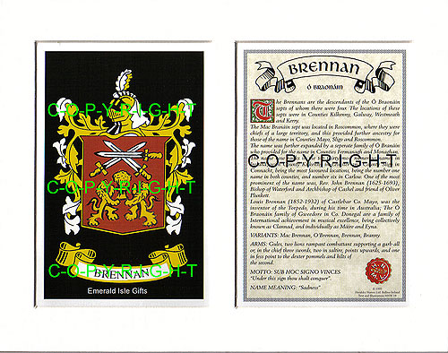 Brennan Family Crest and Name History