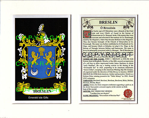 Breslin Family Crest and Name History