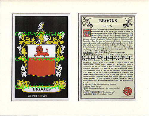 Brooks Family Crest and Name History