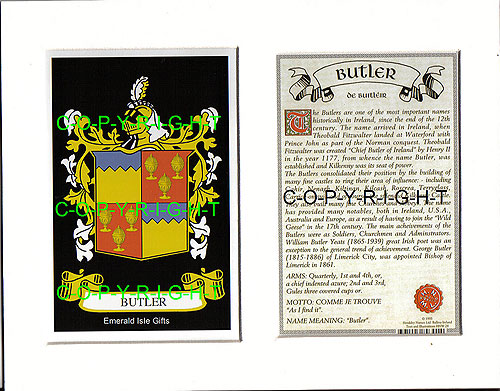 BUSH to CANNON Family Crest and Name History