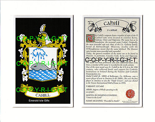 Cahill Family Crest and Name History