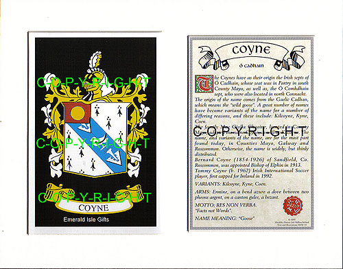 Coyne Family Crest and Name History