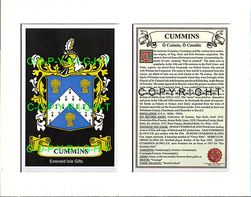 Heraldic Mounts - Cummins Family Crest and History