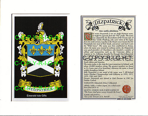 Fitzpatrick Family Crest and Name History