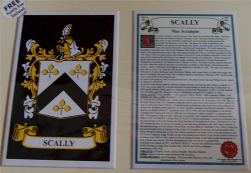 Scally Family Crest and Name History