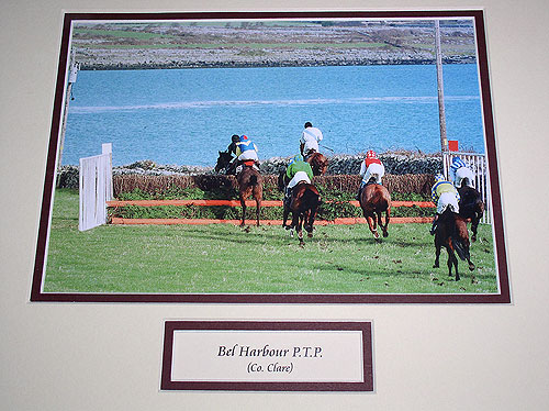 Clare - Bel Harbour Horse Racing