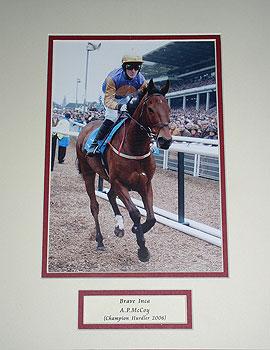 Brave Inca Champion Hurdler 2006 (Cheltenham A.P.McCoy)