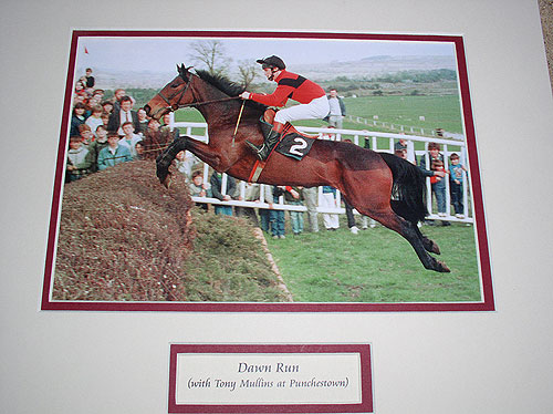 Dawn Run Horse Racings Greatest Mare
