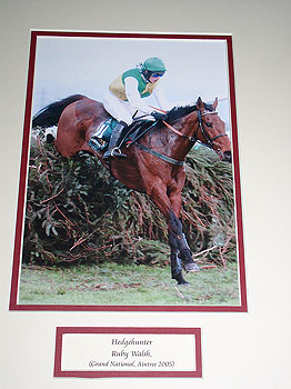 Hedgehunter Grand National
