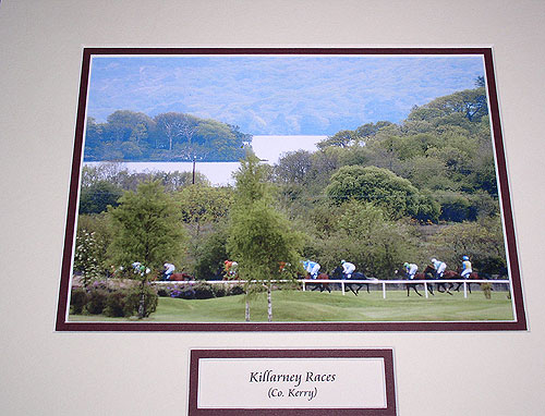 Kerry - Killarney Races