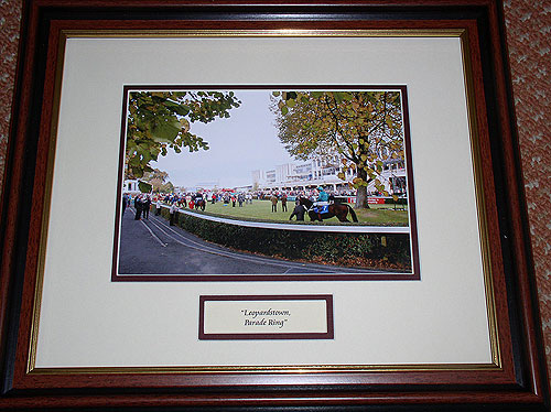Dublin - Leopardstown - Parade Ring