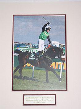 Numbersixvalverde Grand National 2006 (jockey Niall