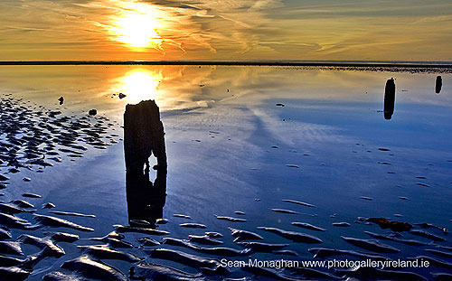 A New Day, Pilmore Strand,  Co Waterford (A New Day, Pilmore Strand)