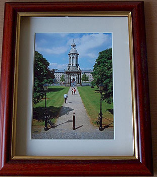 View of the Campanile, Trinity College, Dublin