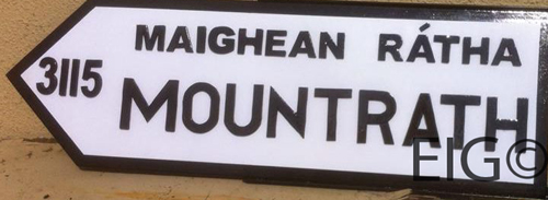 County LAOIS Full Size Town ROAD SIGN