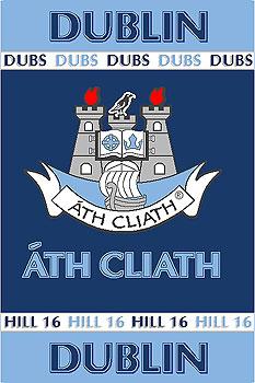 Leinster County Gaa Rugs Dublin Gaa County Crest Irish