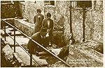 Cork - Blarney - Kissing the Blarney Stone (old b/w Irish photo)