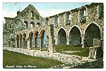 Kilkenny - Jerpoint - Jerpoint Abbey