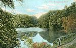 Tyrone - Dungannon - The Lake, Dungannon Park (old colour Irish photo)