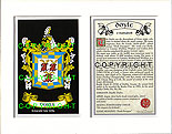 Doyle Family Crest and Name History