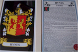 Hynes Family Crest and Name History