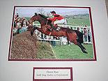 Dawn Run Horse Racings Greatest Mare (Tony Mullins on board)