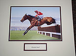 Florida Pearl Mounted Pic