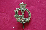 Tara Brooch Brass Door Knocker